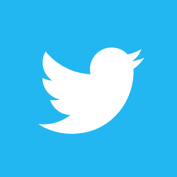 The Register of Play Inspectors Twitter